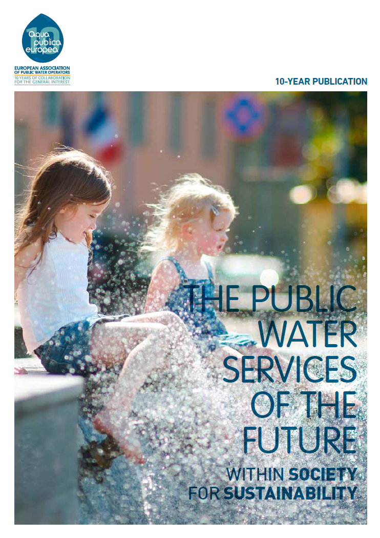 The public water services of the future